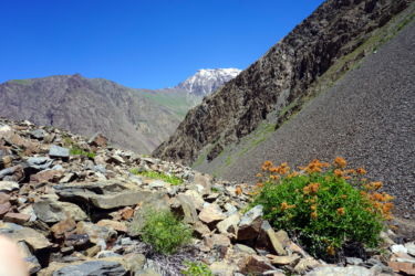 jizeu-tadjikistan-12
