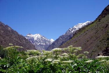 jizeu-tadjikistan-4